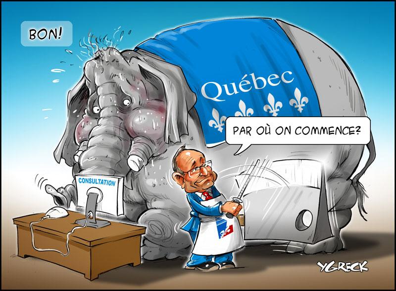 Coiteux-elephant