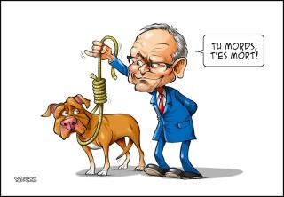 Coiteux-pitbull