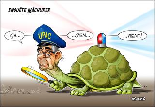 Lafreniere-tortue