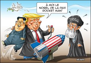 Kim-Donald