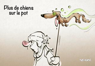 Chien-pot