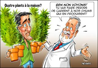 4-plants