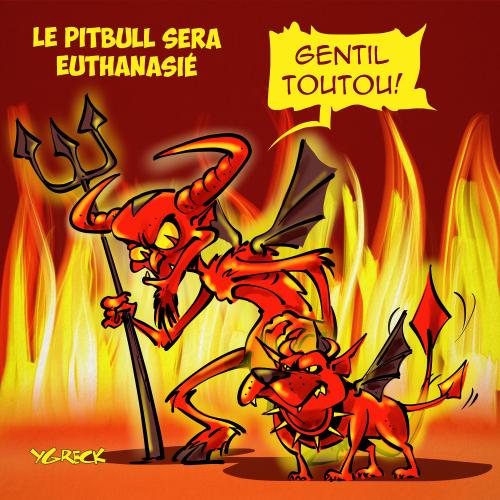 Pitbull_Diable