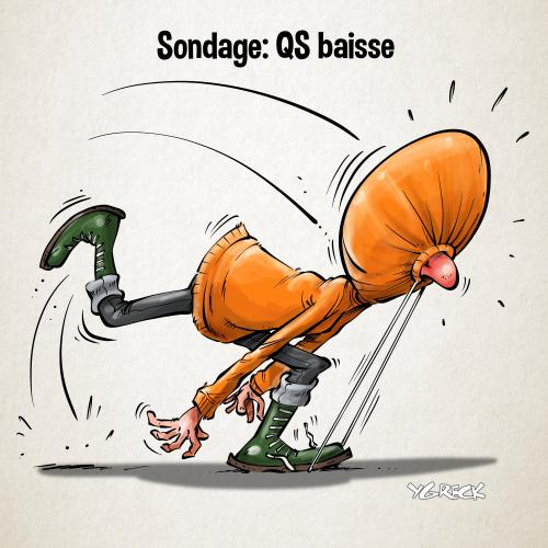 Sondage_QS