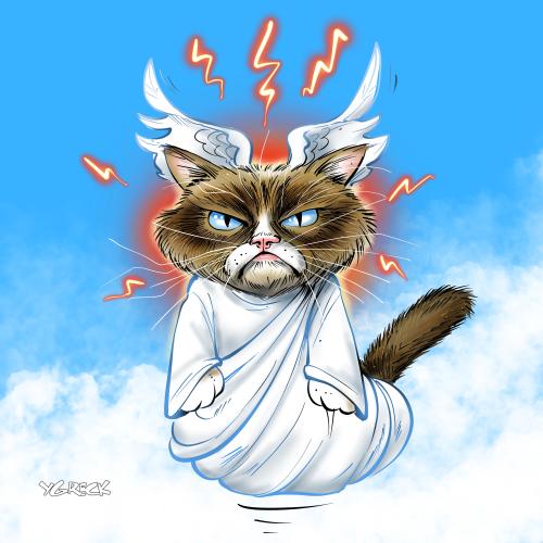 Grumpy_Cat_