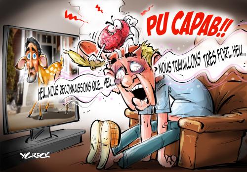 Pu_Capab