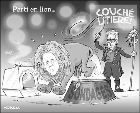 Boucherlion